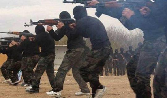 Pakistan trained 4,587 Kashmiri Youths in Terror Camps in POK