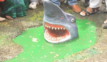 Fake shark on Delhi potholes