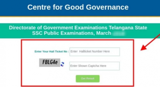 TS Telengana SSC Results 2019 at  bse.telgangana.gov.in