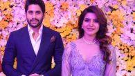 Samantha-Naga Chaitanya's Marriage in Trouble?